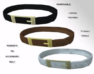bobsiim's 3d belt