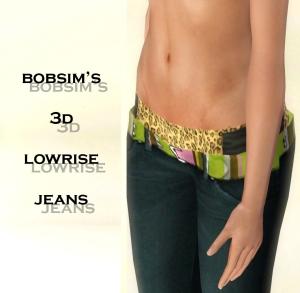 Bobsim's 3D Lowrise Jeans2